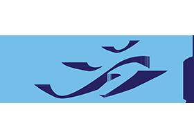Great Lakes Orthopedics and Sports Medicine, P.C.